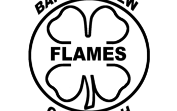 Manage campaigns 4 h flames logo