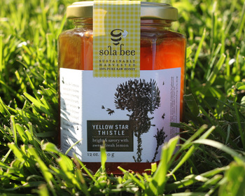 Market card yellow star thistle honey