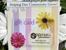 Small gift card 25