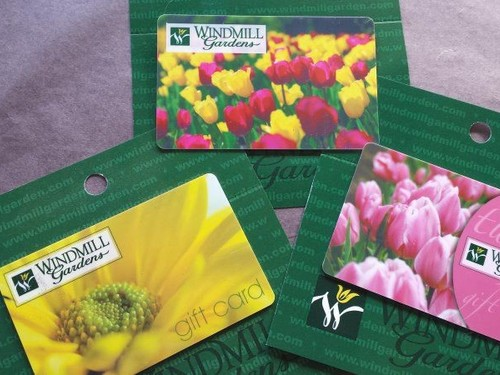 Windmill $50 Gift Card
