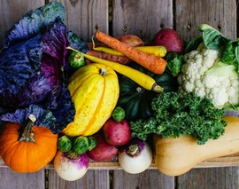 Card image fall vegetables