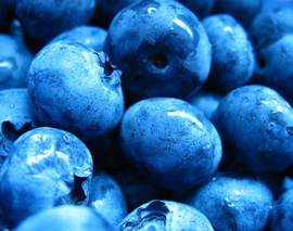 Card image blueberries 1323372 640x480