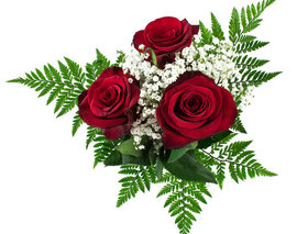 Card image 3 stem red rose bouquet  37303.1534083179