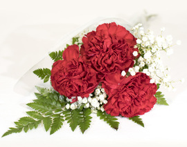 Card image 3 stem red carnation bouquet