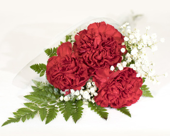 Market card 3 stem red carnation bouquet