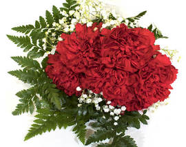 Card image 6 stem red carnation bouquet