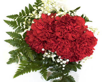 Market card 6 stem red carnation bouquet