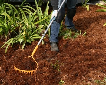 Market card preview radius groundhog rake a review in photos north coast gardening mulch rake