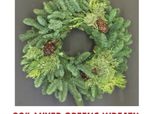 "22"" Mixed Greens Wreath with Pine Cones and a Red Bow"