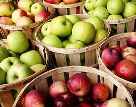 Card image bushel of apples