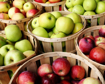 Market card bushel of apples