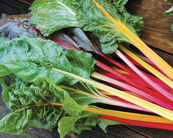 Market card improved rainbow mix chard