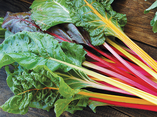 Improved Rainbow Chard